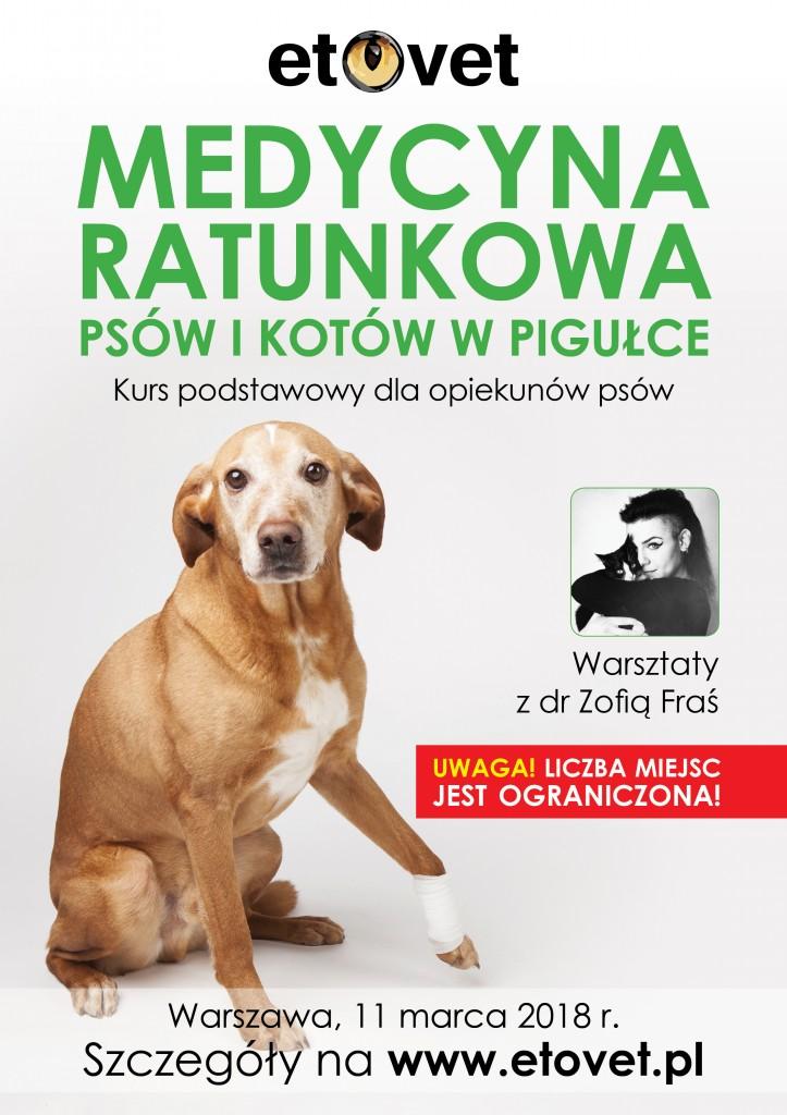 Reklamy Warsztaty5